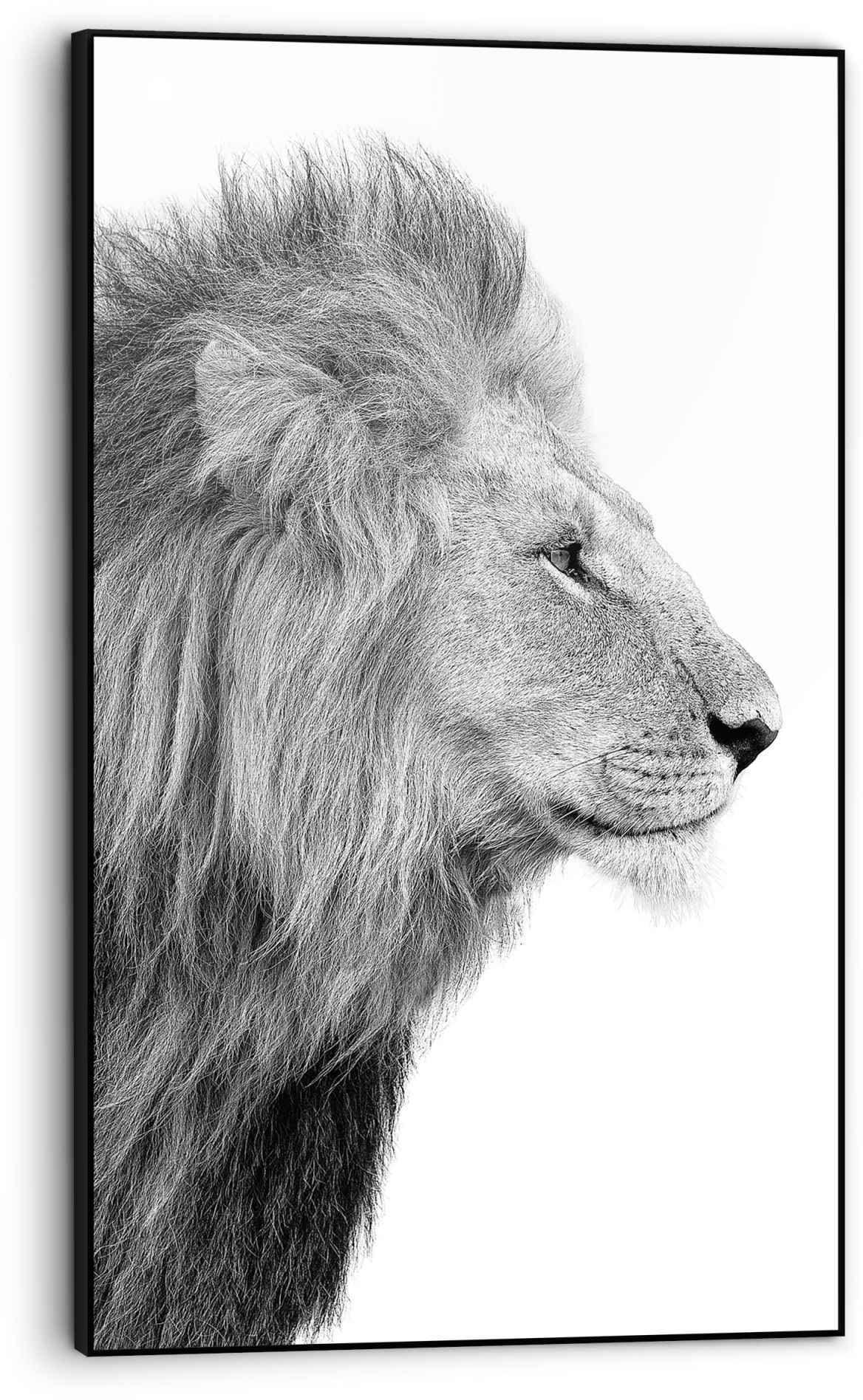Reinders Bild Gerahmtes Bild Löwenkopf Tierkopf - Porträt - Seitenansicht, Löwen, (1 St.)