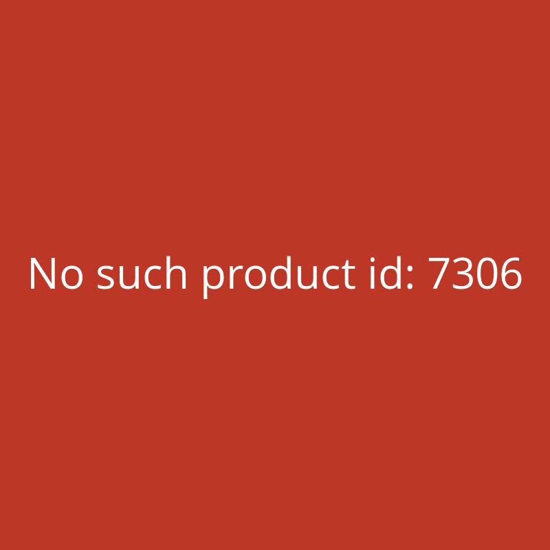 Sinterit ATEX Vacuum Cleaner Pulver-Staubsauger