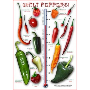 Das Chili Pepper Poster