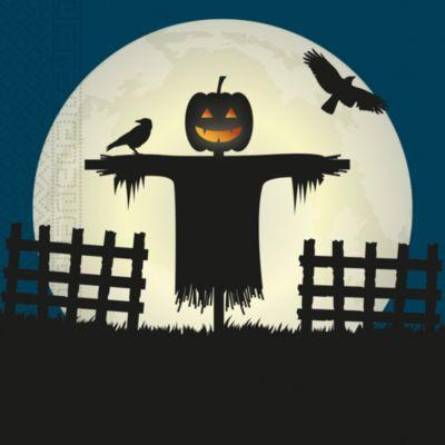 Halloween Auf Rechnung Bestellen Auch Fur Neukunden