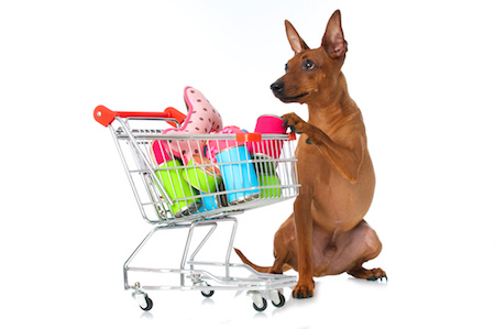Warum Gibt Es Shops Bei Denen Ich Nicht Auf Rechnung Kaufen Kann Obwohl Diese Die Option Anbieten
